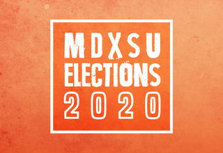 Article pic elections 2020