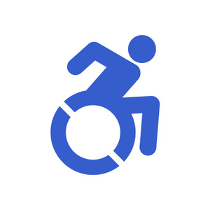 Disabled community icon 2020