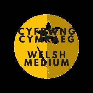 Cyfrwng cymraeg