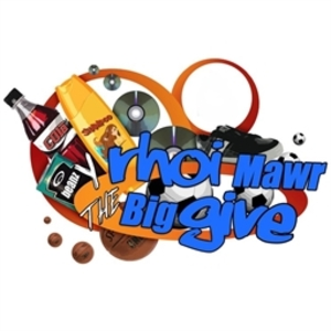 Big give logo msl