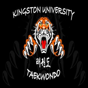 Kingston tiger