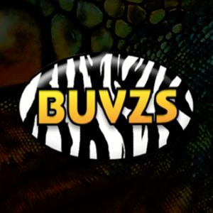 Buvzs su logo