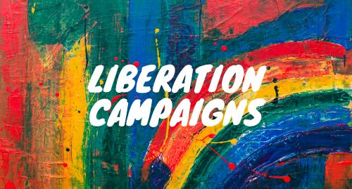 Liberation Campaigns button