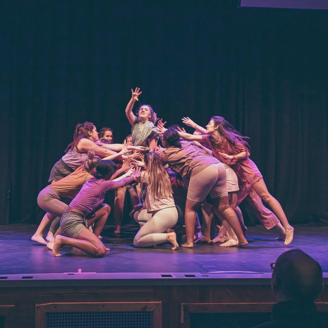 Picture of the Dance Club performing