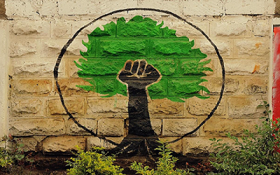 Mathare Green Movement logo