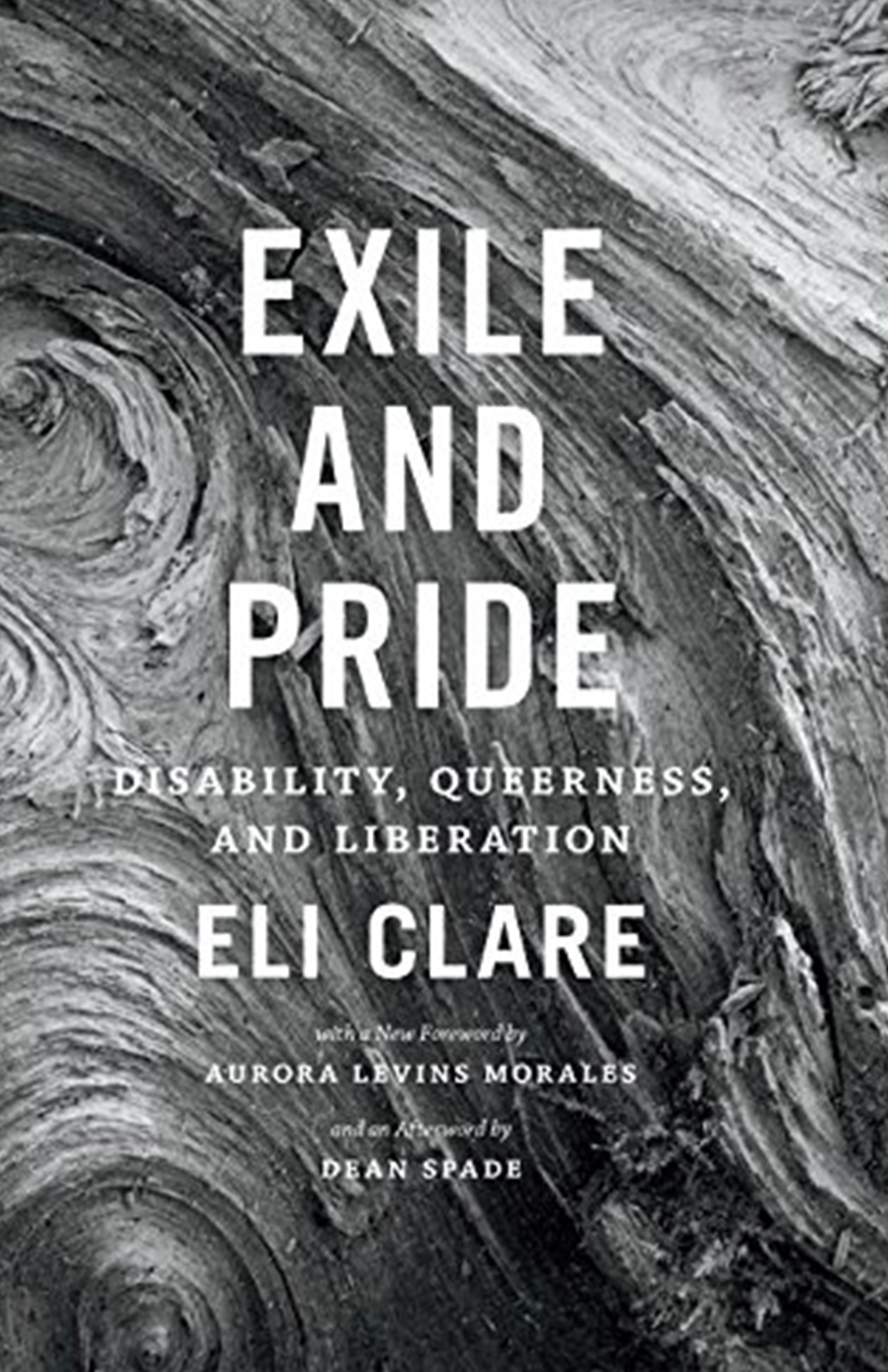 Exile and Pride: Disability, queerness and liberation by Eli Clare