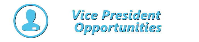 Vice President Opportunities