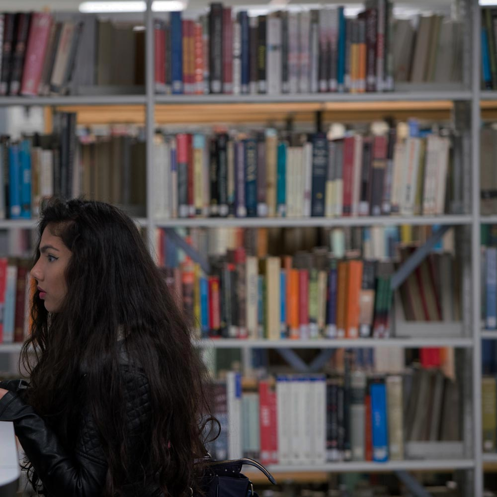 A student studying in the St Mary's University library