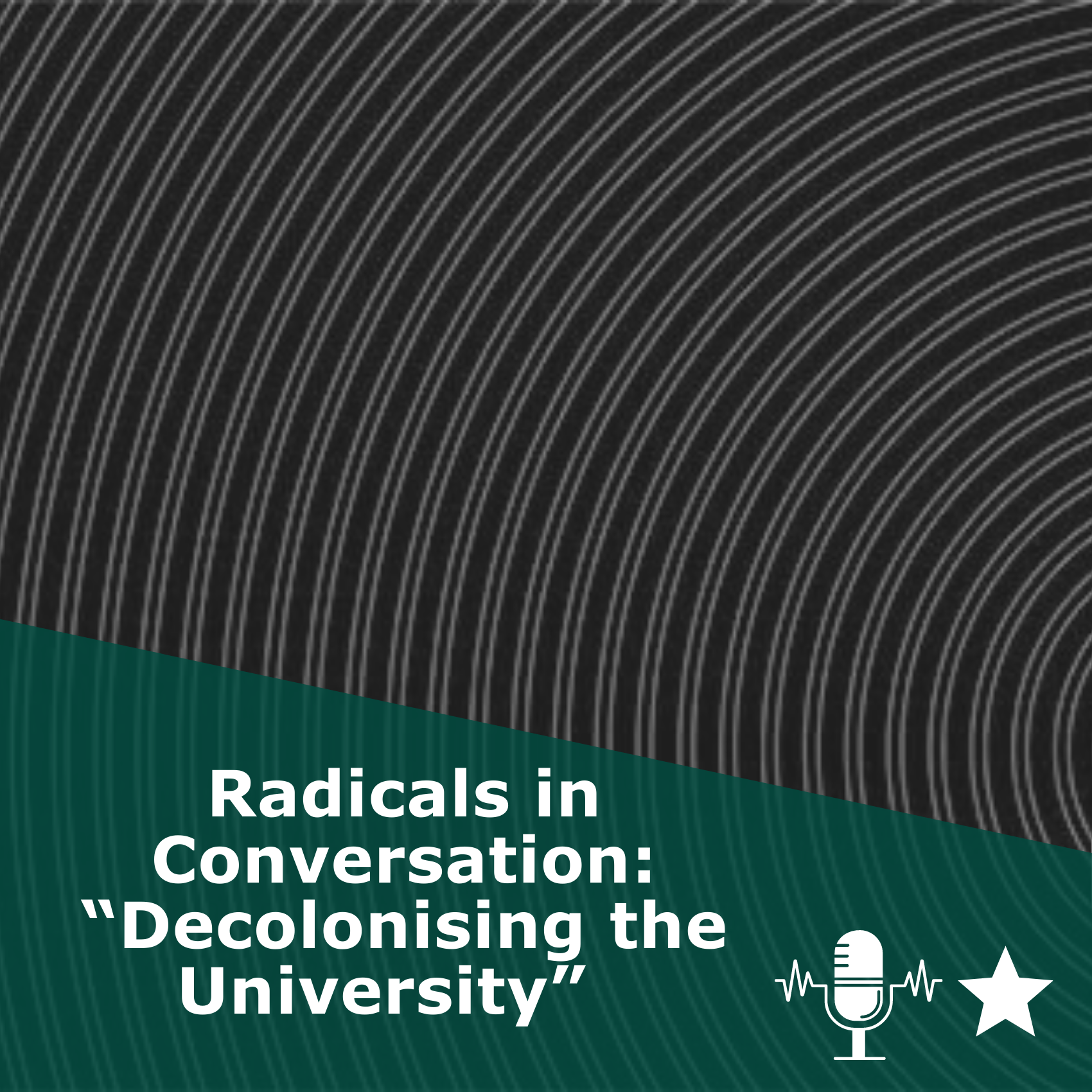 "Picture of waves in black and white. Title 'Radicals in Conversation, Episode 12: ""Decolonising the University"" 