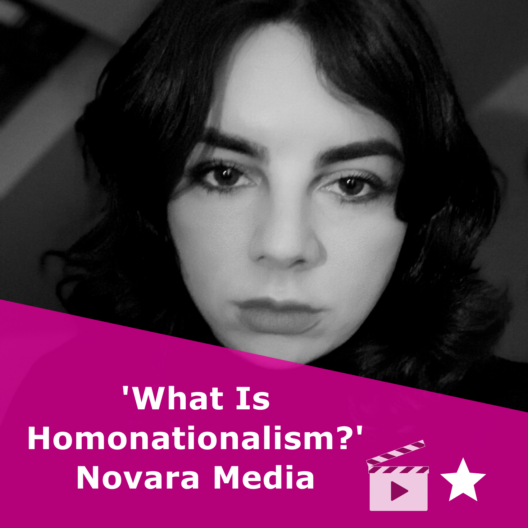 Picture of Shon Faye in black and white. Title 'What Is Homonationalism?'. It is an article from Novara Media, rated one star.