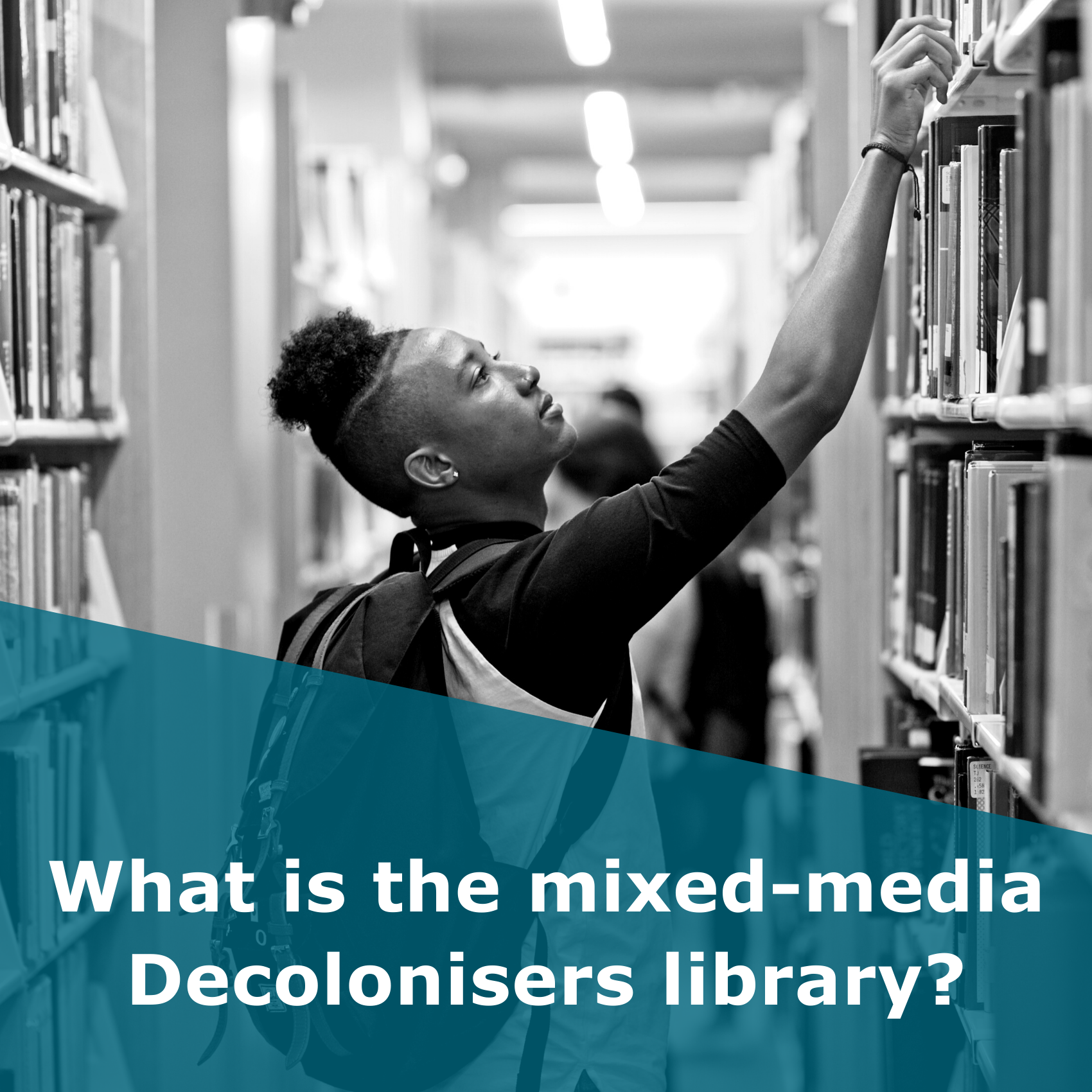 What is the mixed-media Decolonisers' Library?