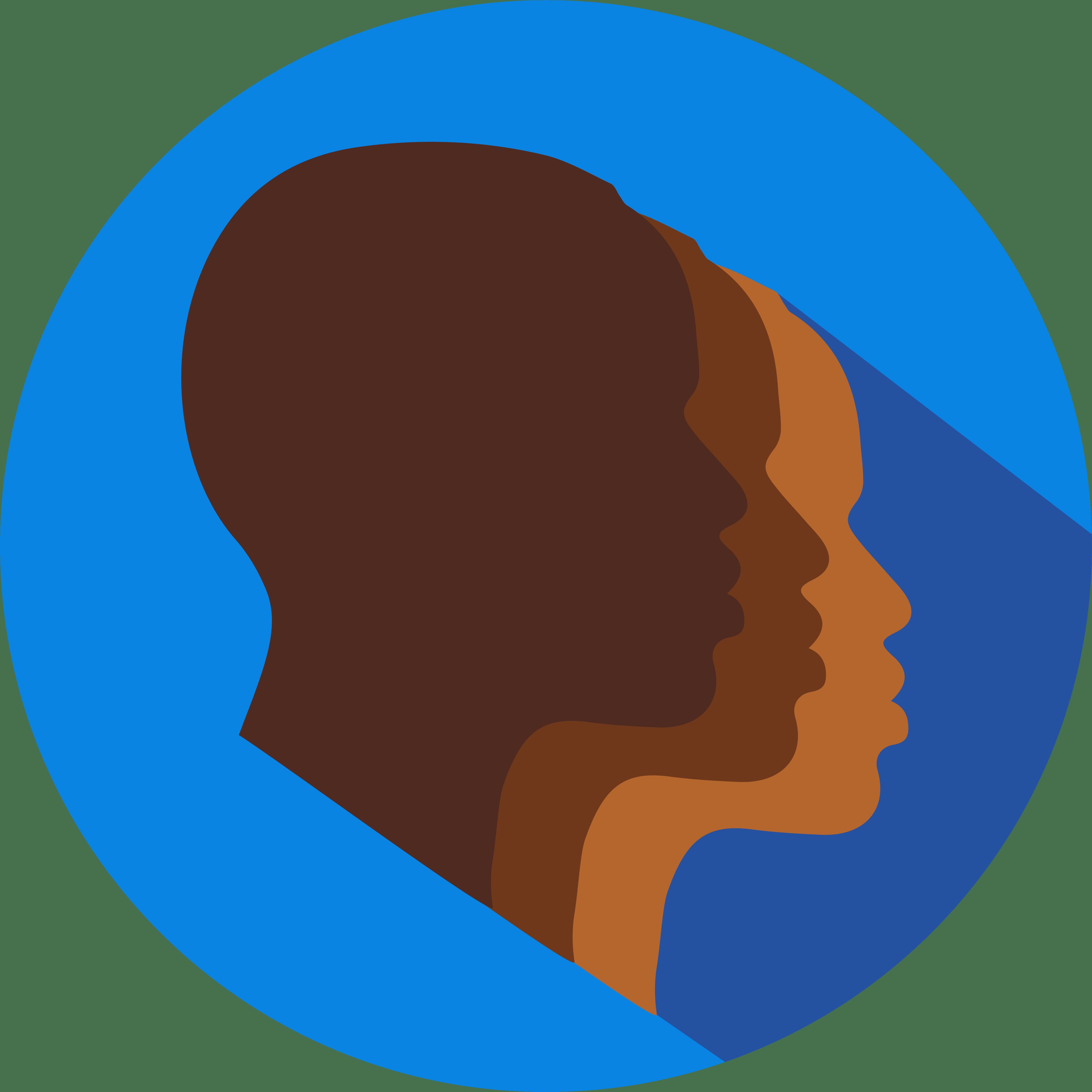 Black Students' Network