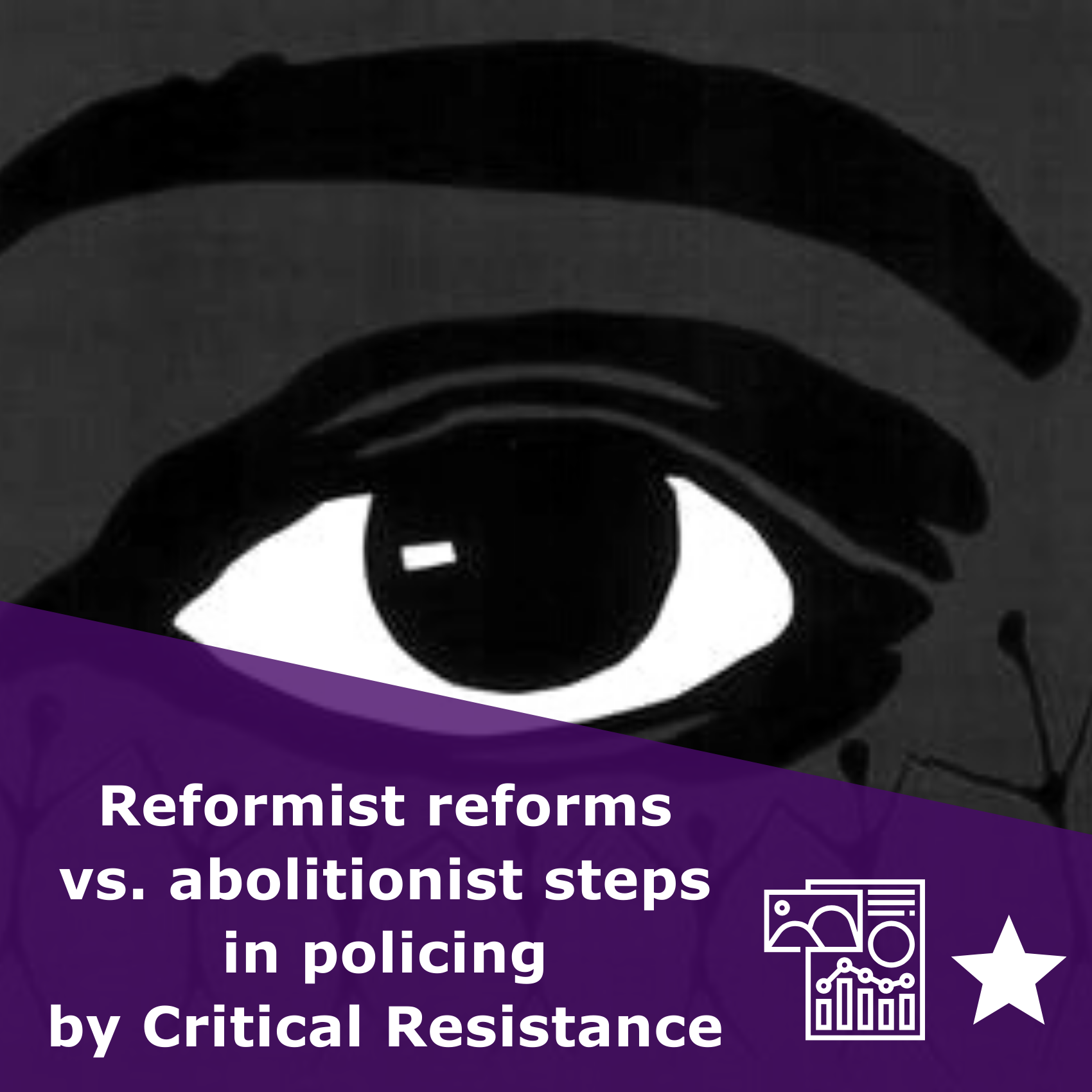 Reformist reforms vs. abolitionist steps in policing by Critical Resistance, infographic rated 1 star