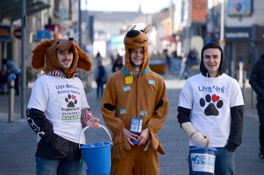 Students street fundraising in dog themed fancy dress.