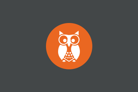 Aceyourexams owl