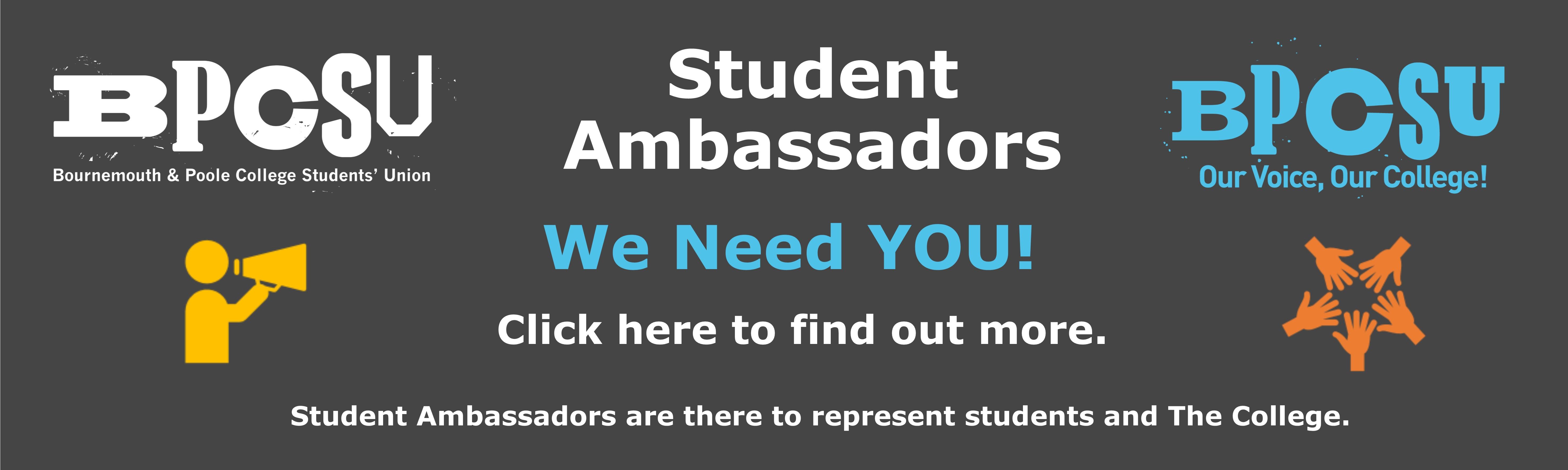 Ambassador web banner 2
