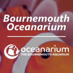 Bournemouth ocenaruim