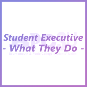 Student executive tile