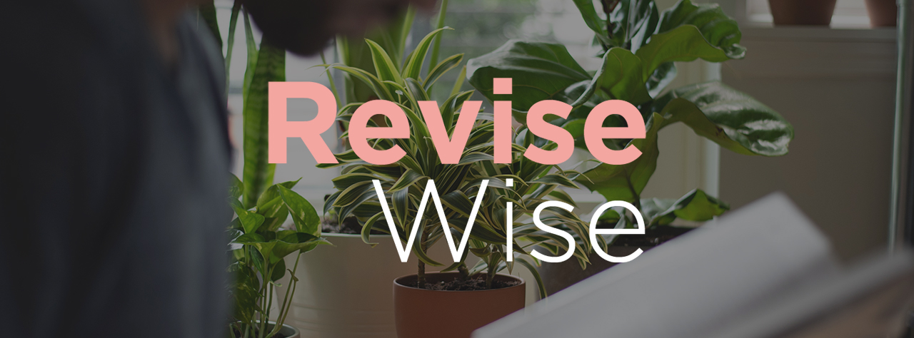 Revise wise home page