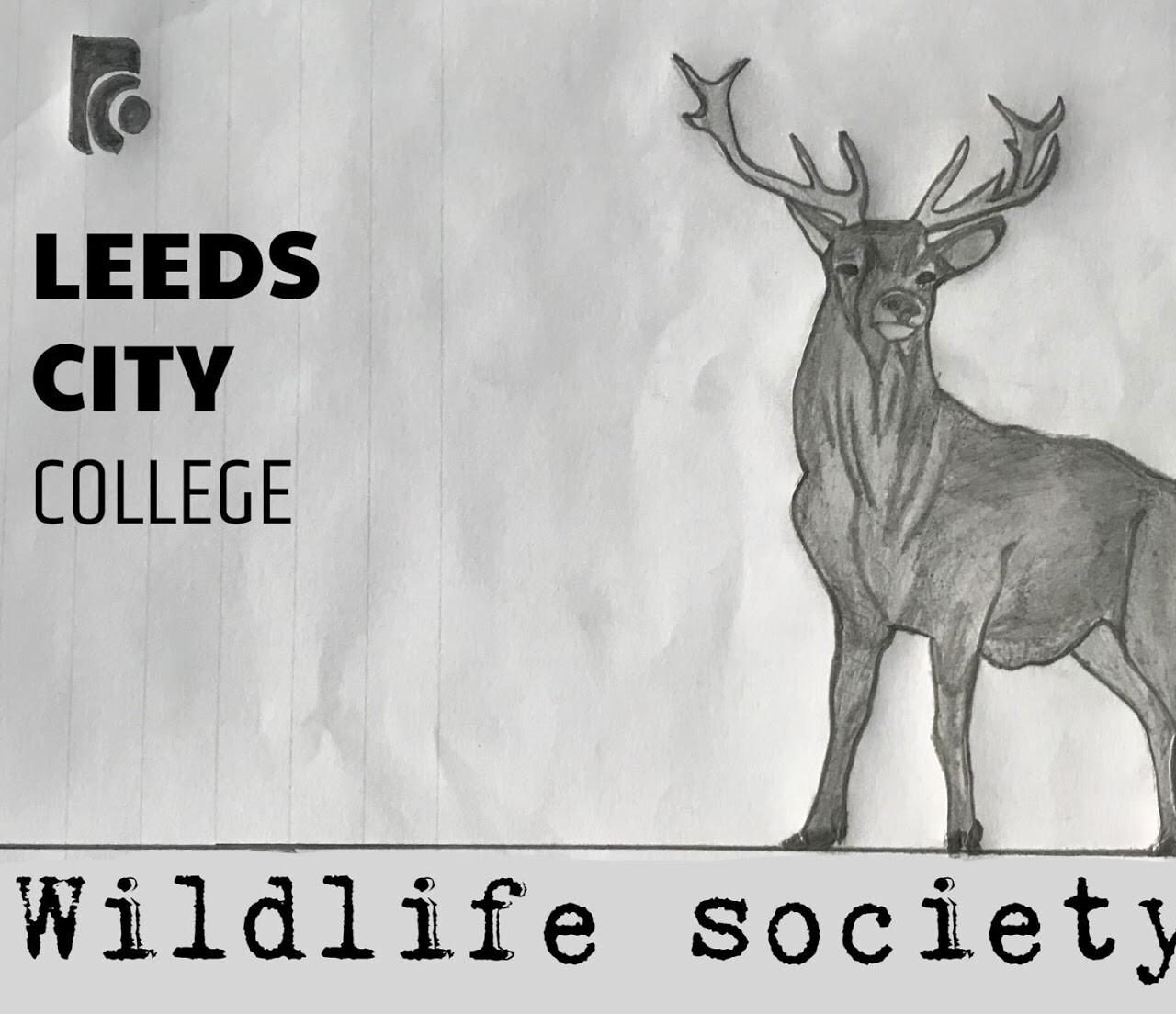 Wildlife soc