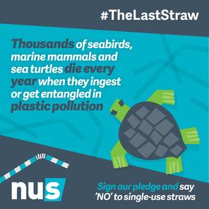 Nus the last straw marine life