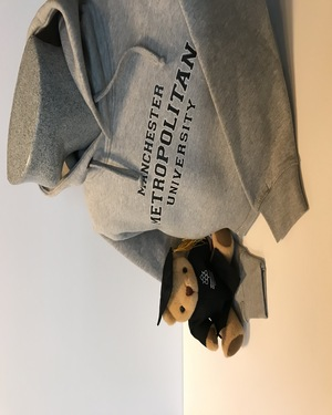 Bear grey hood